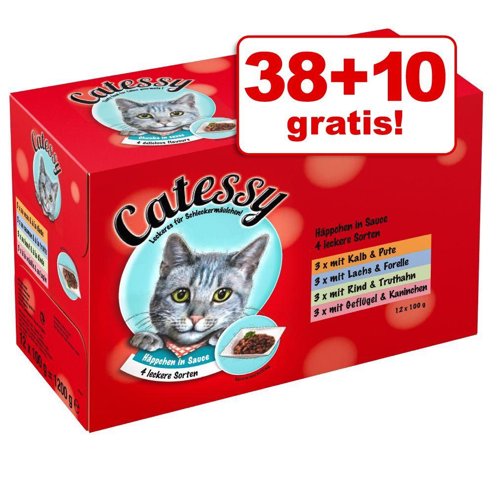 38 + 10 gratis! Catessy K