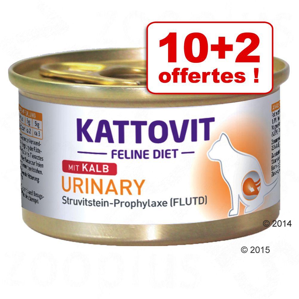 Chat Boîtes et sachets Kattovit