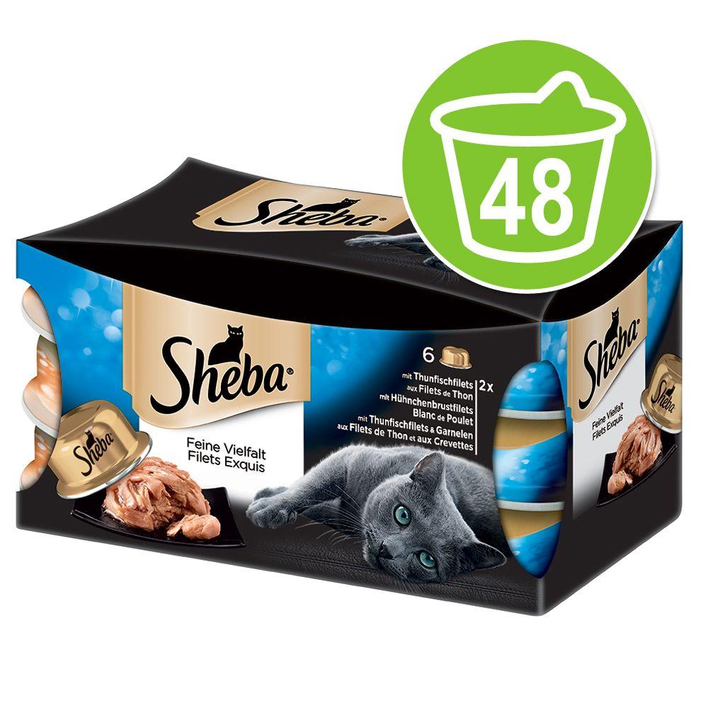 Chat Boîtes et sachets Sheba Les Filets Exquis de Sheba