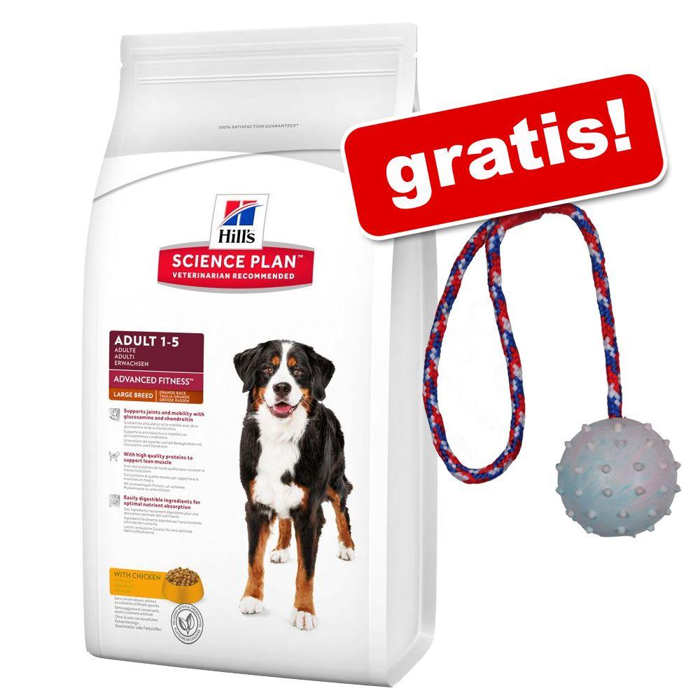 12 kg Hill's Canine + Trixie Gummiball gratis! - Adult Lamm mit Reis
