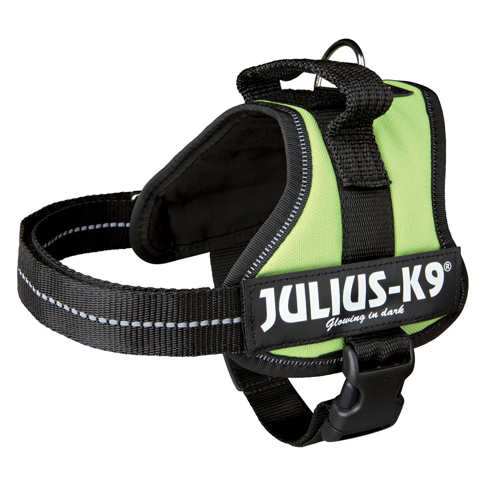Julius-K9 Power Harness - Light Green - Size 3