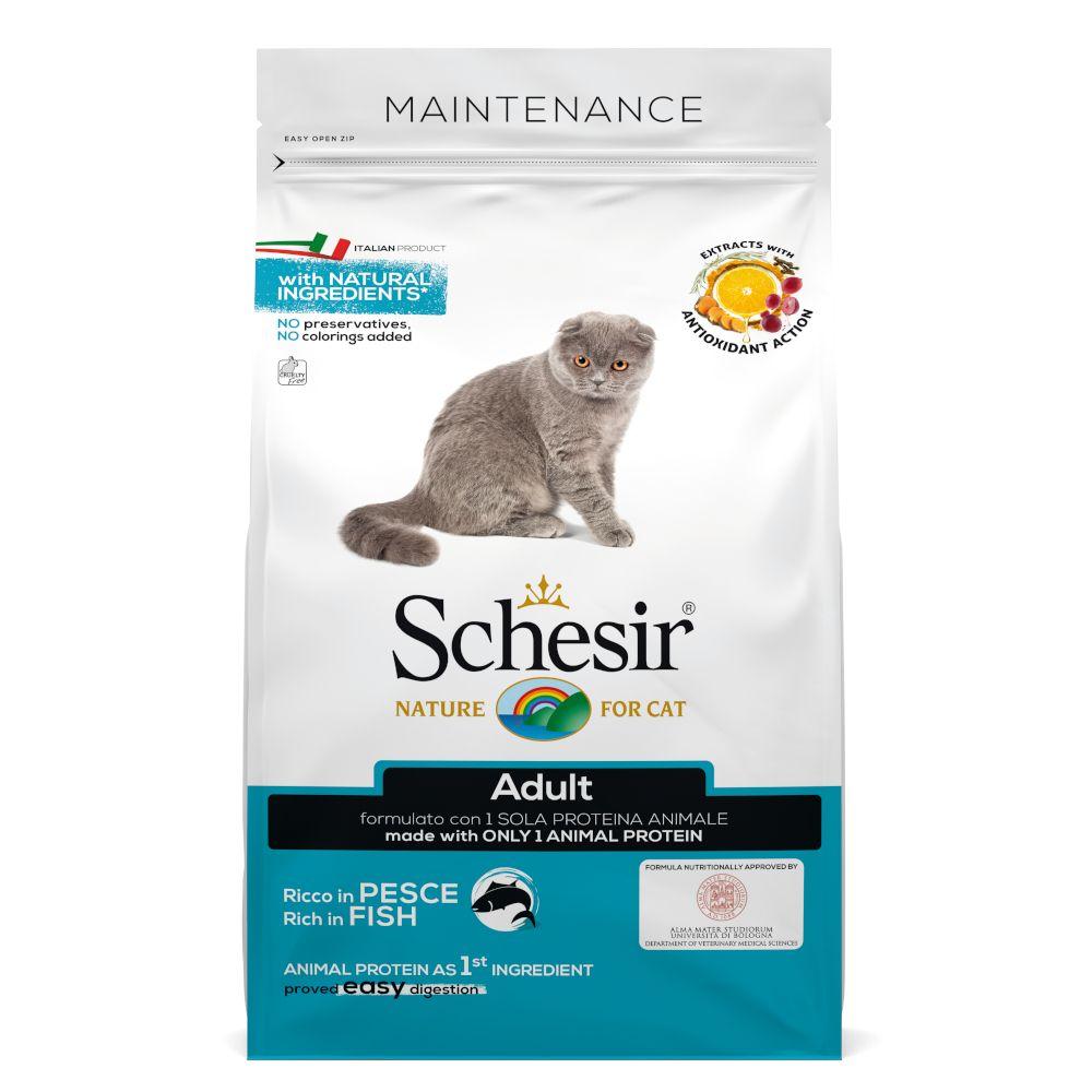 Schesir Adult Maintenance med fisk 10 kg