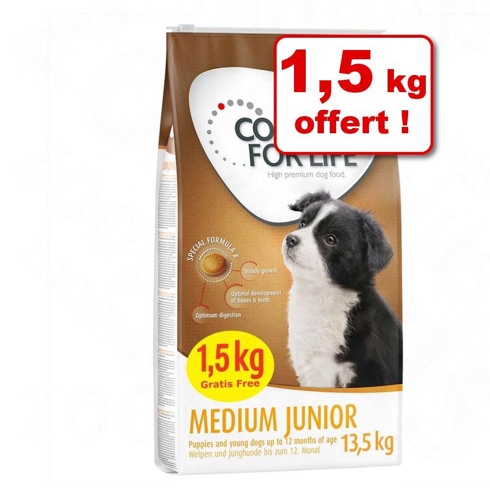 12kg Large Junior Concept for Life - Croquettes pour chien