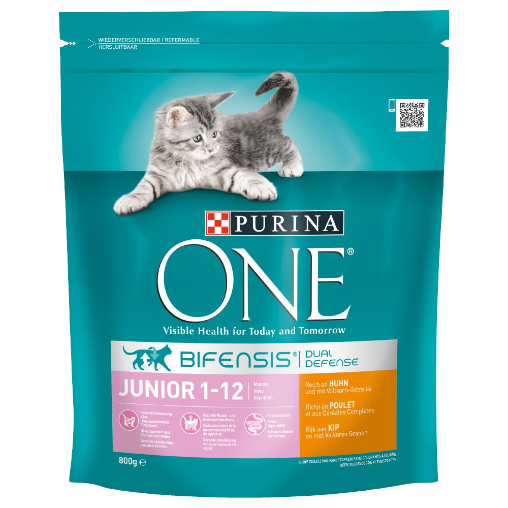 Junior Chicken Purina One Dry Cat Food