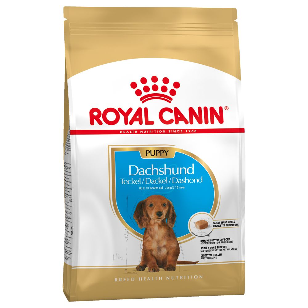 Puppy Dachshund Royal Canin Dry Dog Food