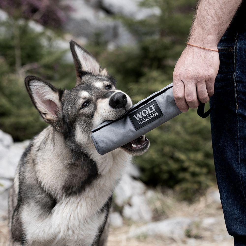 Wolf of Wilderness Trainings-Dummy mit Handschlaufe - passend dazu: Wolf of Wilderness Wild Bites Snack - Scandinavia (180g)