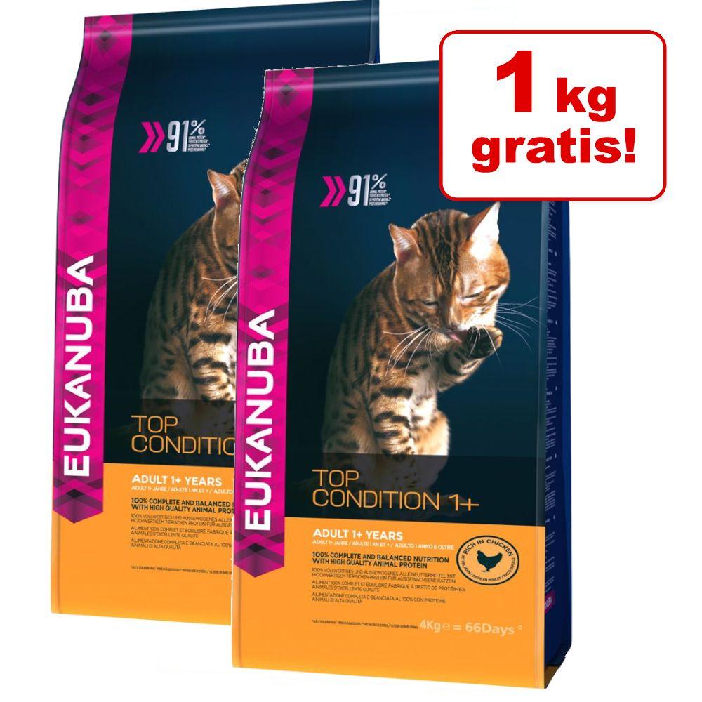 5/7 kg + 1 kg på köpet! 2 x små påsar Eukanuba torrfoder - 2 x 4 kg Hairball Control Adult