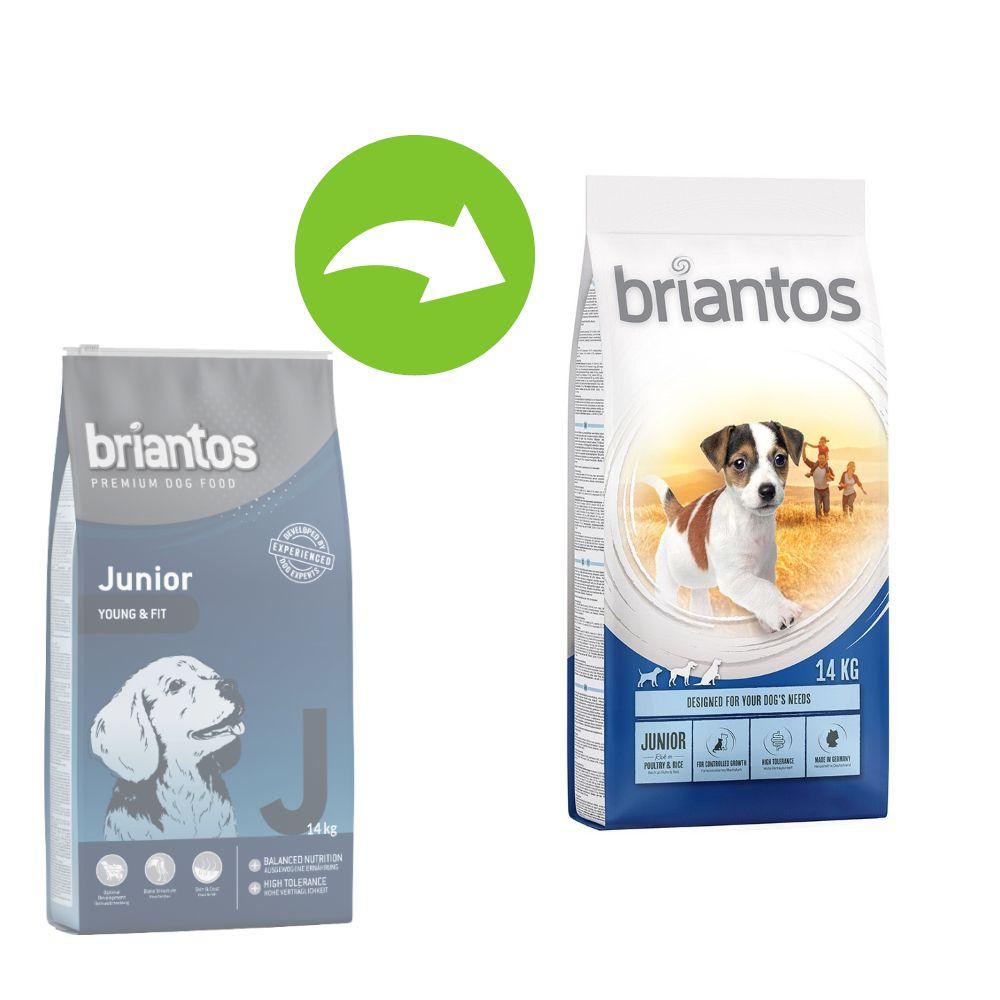 Image of Briantos Junior Young & Fit - 1 kg