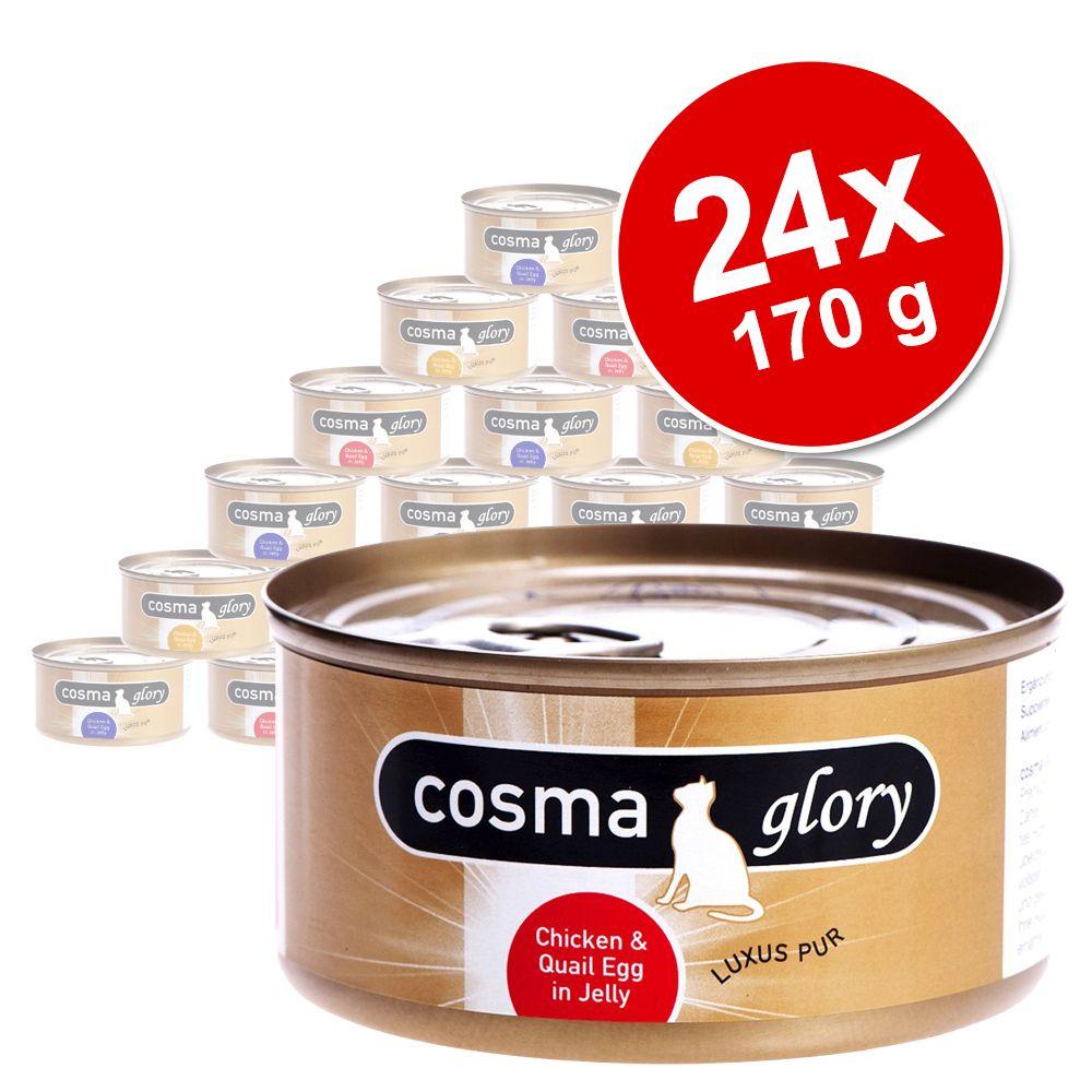 Megapakiet Cosma Glory, 2