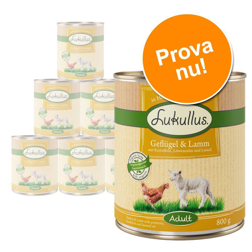 Blandat provpack: Lukullus Adult 6 x 200/400/800 g – 6 x 800 g