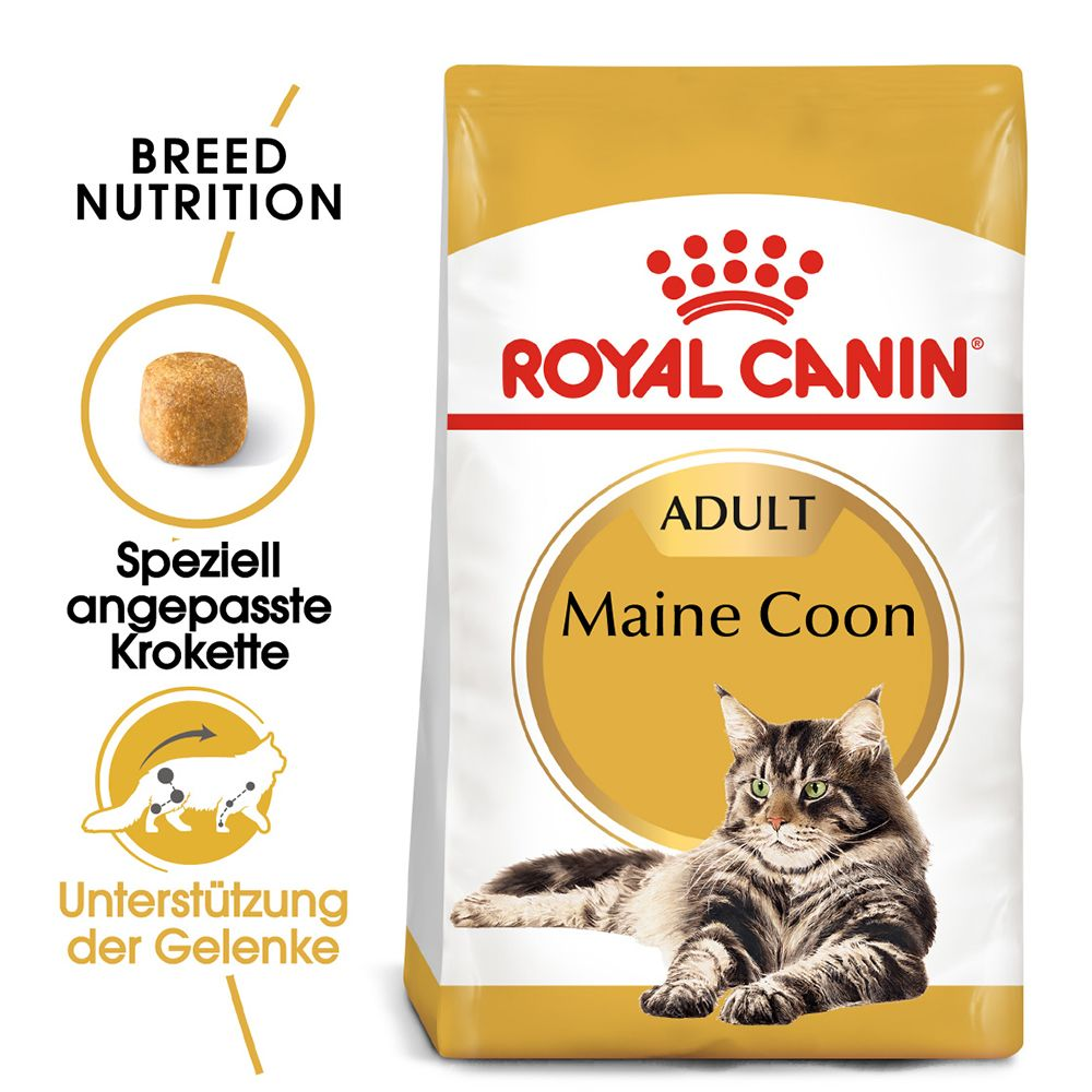Royal Canin Breed Maine Coon Adult - 4 kg