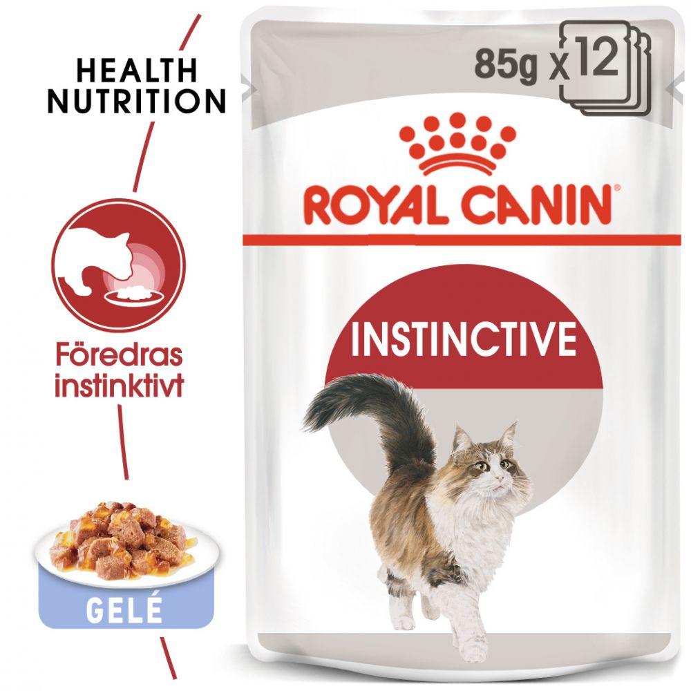Royal Canin Instinctive i gelé - 24 x 85 g Instinctive mix i sås & gelé
