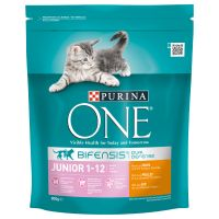 Purina ONE Junior Chicken & Whole Grains Dry Cat Food - 800g
