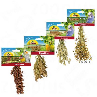 jr-farm-pakket-gierst-set-4-artikelen-250g