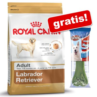 Stor påse Royal Canin Breed + Trixie Denta Fun på köpet! – Beagle Adult (12 kg)