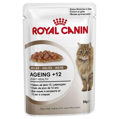 royal-canin-ageing-12-v-zele-vyhodne-baleni-24-x-85-g