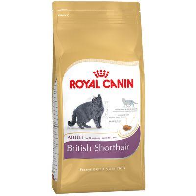 royal-canin-british-shorthair-4-kg