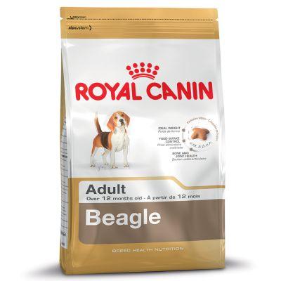 Royal Canin Beagle Adult – Ekonomipack: 2 x 12 kg