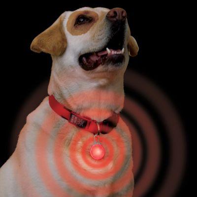 bezpecnostni-privesek-na-karabinu-nite-ize-led-cervene-svetlo
