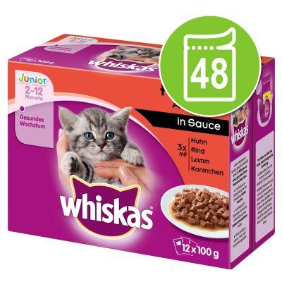 Whiskas Junior Pouches -säästöpakkaus 48 x 100 g - siipikarjavalikoima kastikkeessa