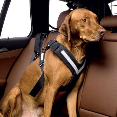 Kleinmetall Allsafe Hunde Sicherheitsgurt