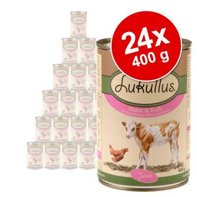 Ekonomipack: Lukullus Junior 24 x 400 g – Blandpack