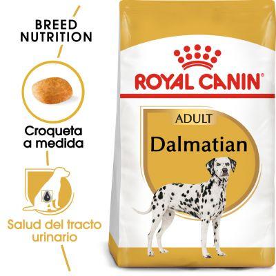 Royal Canin Dálmata Adult - 2 x 12 kg - Pack Ahorro