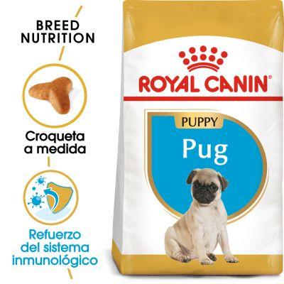 Royal Canin Carlino Puppy  - 1,5 kg