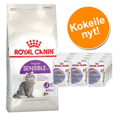 Royal Canin -kokeilupakkaus: 400 g + 12 x 85 g - Exigent 33 Aromatic Attraction