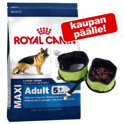 Royal Canin Size koiranruoka + kokoontaitettava matkakuppi kaupan päälle! - Medium Starter (12 kg)