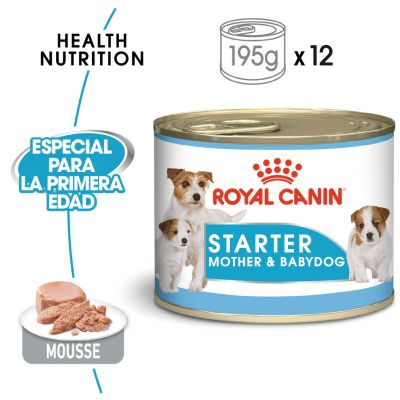 Royal Canin Starter Mousse Madre y Cachorro - 48 x 195 g - Pack Ahorro