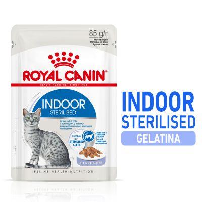 Royal Canin Indoor Sterilised en gelatina - 12 x 85 g
