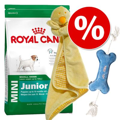 Royal Canin Breed Welpen Starterset - Dalmatian Junior (12 kg)