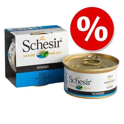 Schesir in Jelly kissanruoka 6 x 85 g erikoishintaan! - kanafile & kinkku