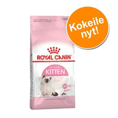 Tutustumishintaan: 400 g Royal Canin kissanpennuille - Kitten (korkeintaan 12 kk)