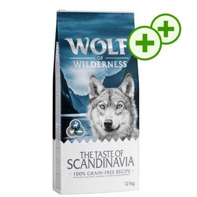 2x zooPlusPisteitä: Wolf of Wilderness 12 kg - Green Fields - lammas