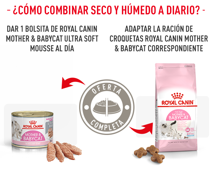 Royal Canin Mother Amp Babycat Mousse En Zooplus