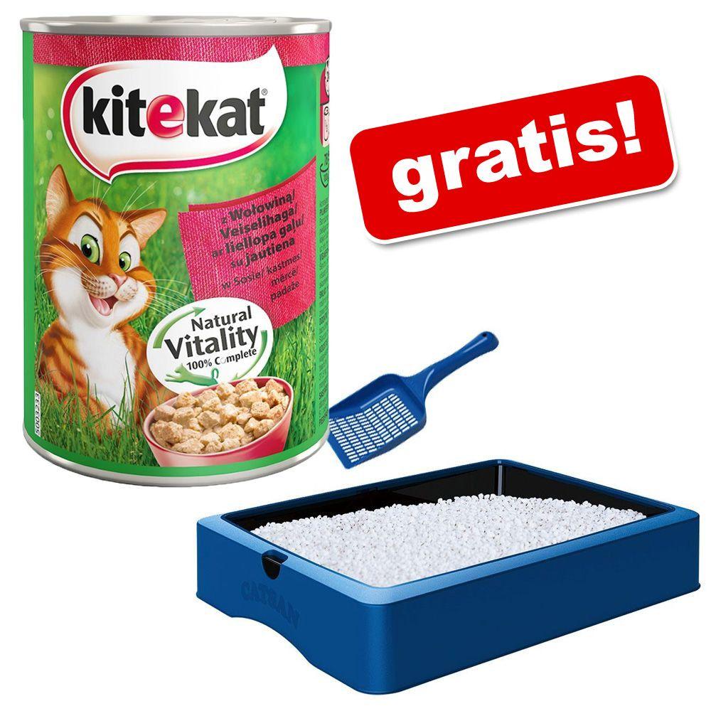 Catsan lettiera igienica 3 x prezzo e offerte sottocosto for Catsan lettiera
