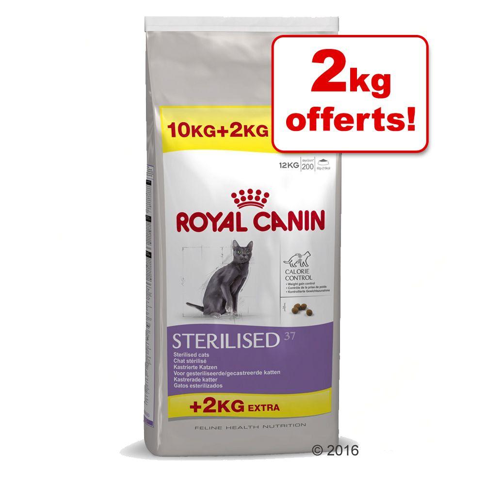 royal canin chat sensible 33 10 2 kg gratuit. Black Bedroom Furniture Sets. Home Design Ideas