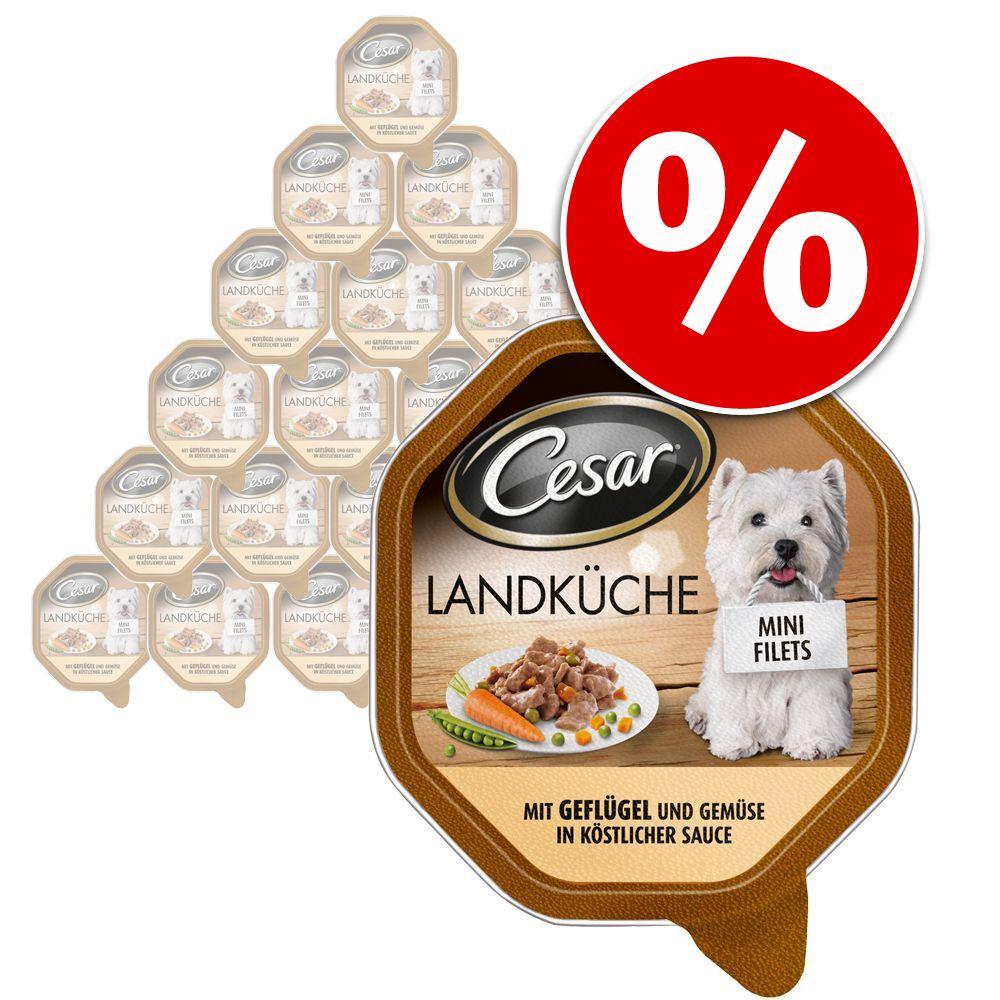 Cesar Landküche Mini Filets Megapack - Mixpaket...