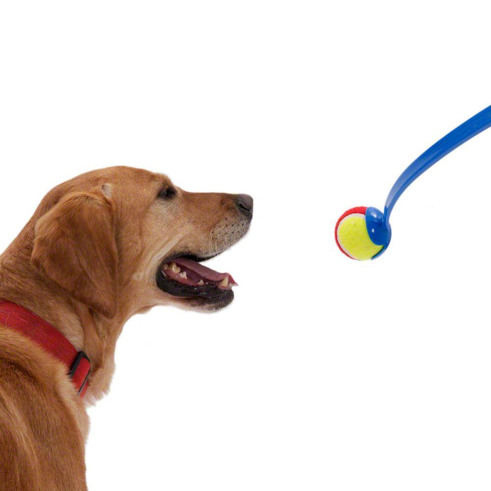 Wyrzutnia piłki dla