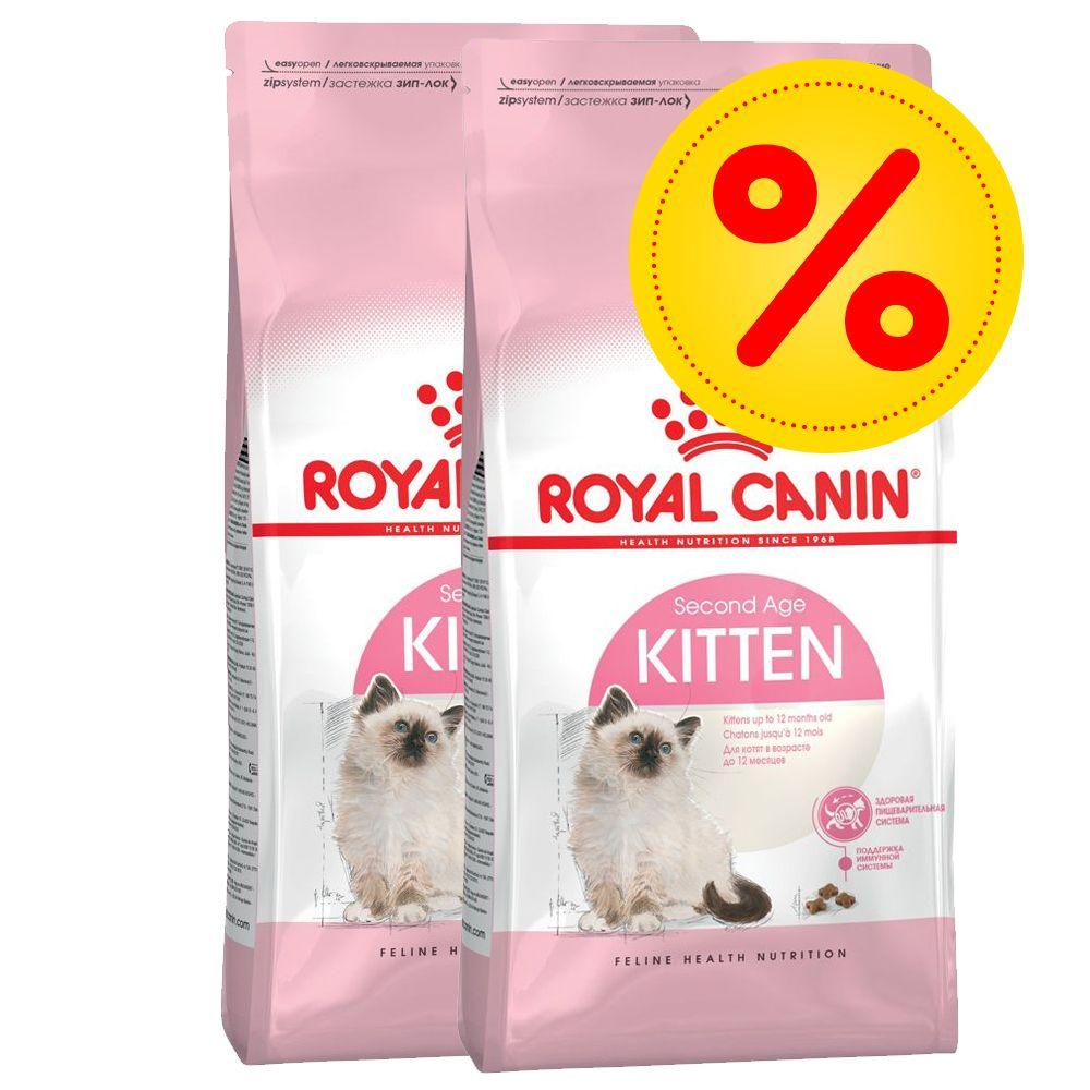royal canin kitten british shorthair 10 kg preisvergleich. Black Bedroom Furniture Sets. Home Design Ideas