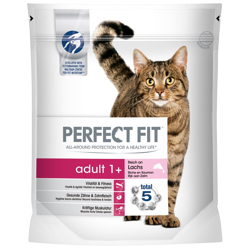 Perfect Fit Adult 1+, z łososiem - 2 x 1,4 kg