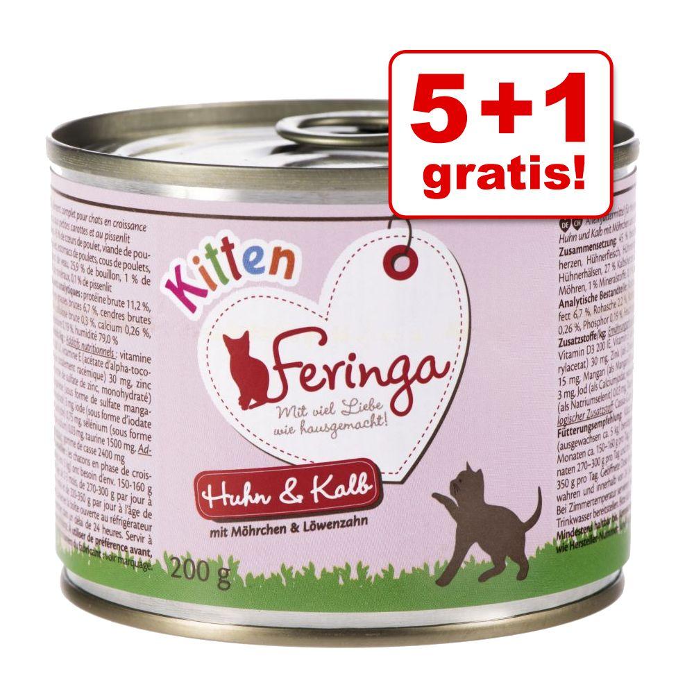 5 + 1 gratis! Feringa karma mokra dla kociąt, 6 x 200 g - Kurczak i cielęcina
