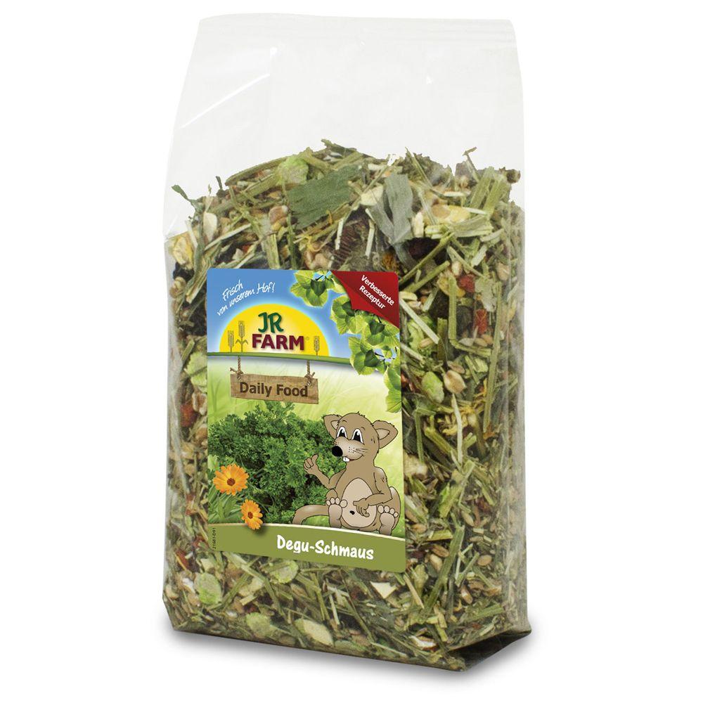 JR Farm Degu-Schmaus - 10 kg