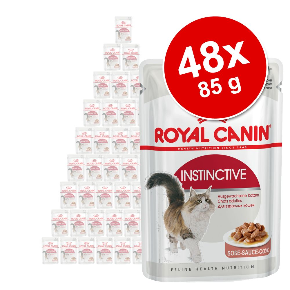 Ekonomipack: Royal Canin våtfoder 48 x 85 g - Sterilised Loaf i mousse