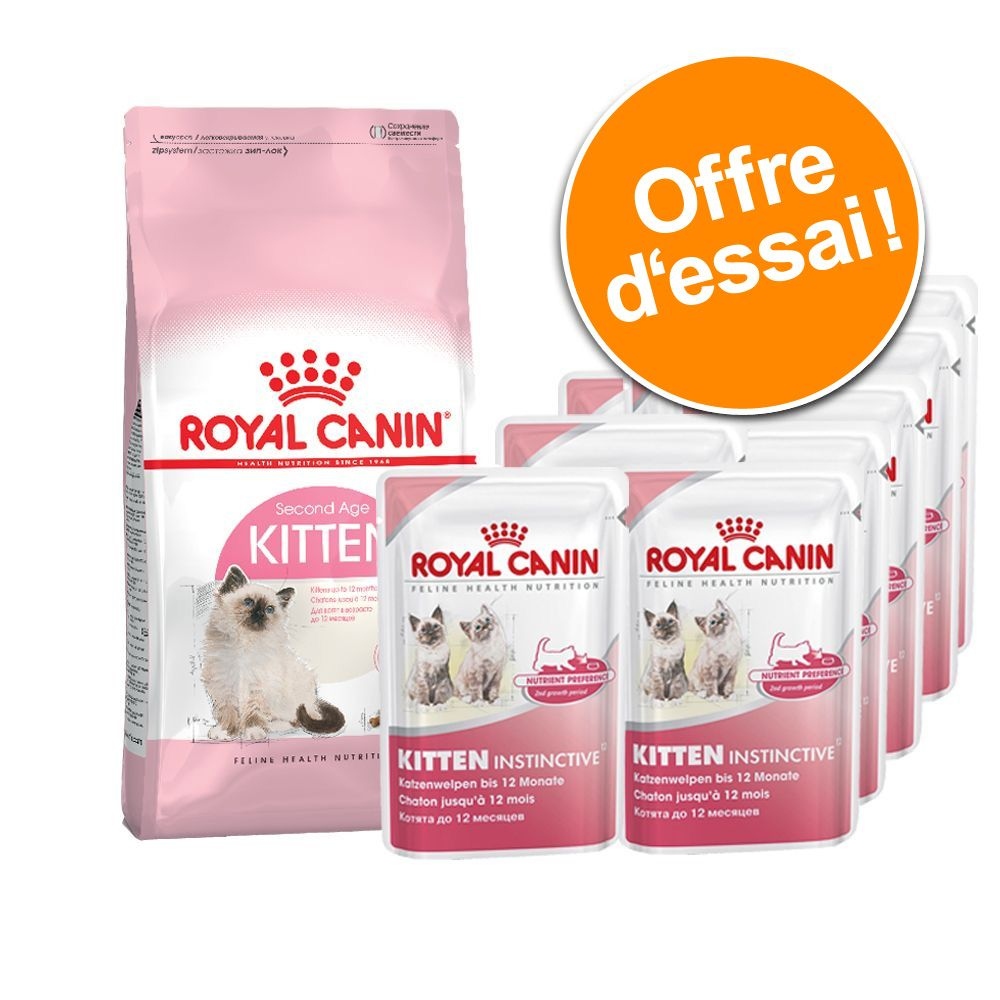 Chat Croquettes Royal Canin Chatons
