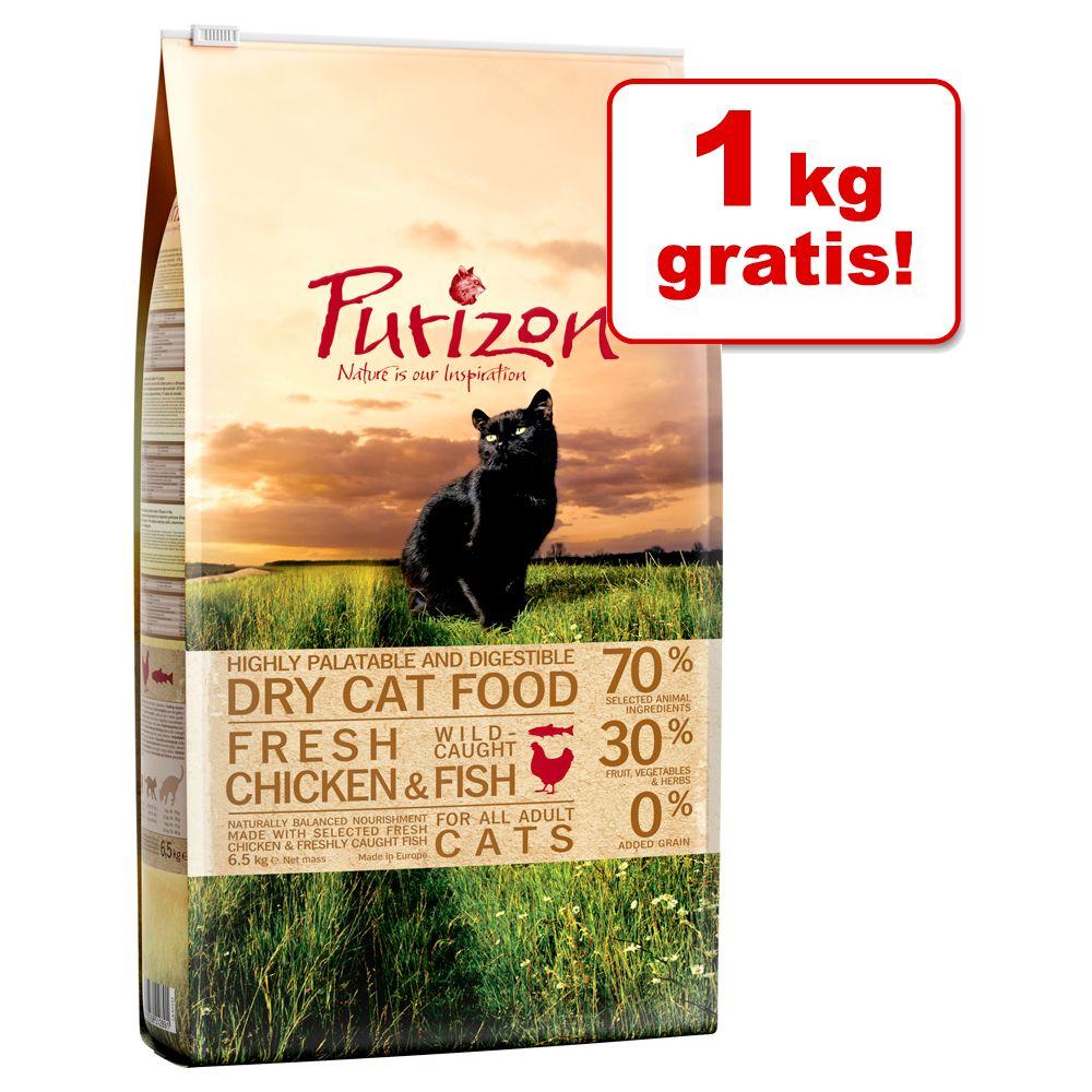 5,5 kg + 1 kg på köpet! 6,5 kg Purizon spannmålsfritt torrfoder för katt - Adult Wild Boar