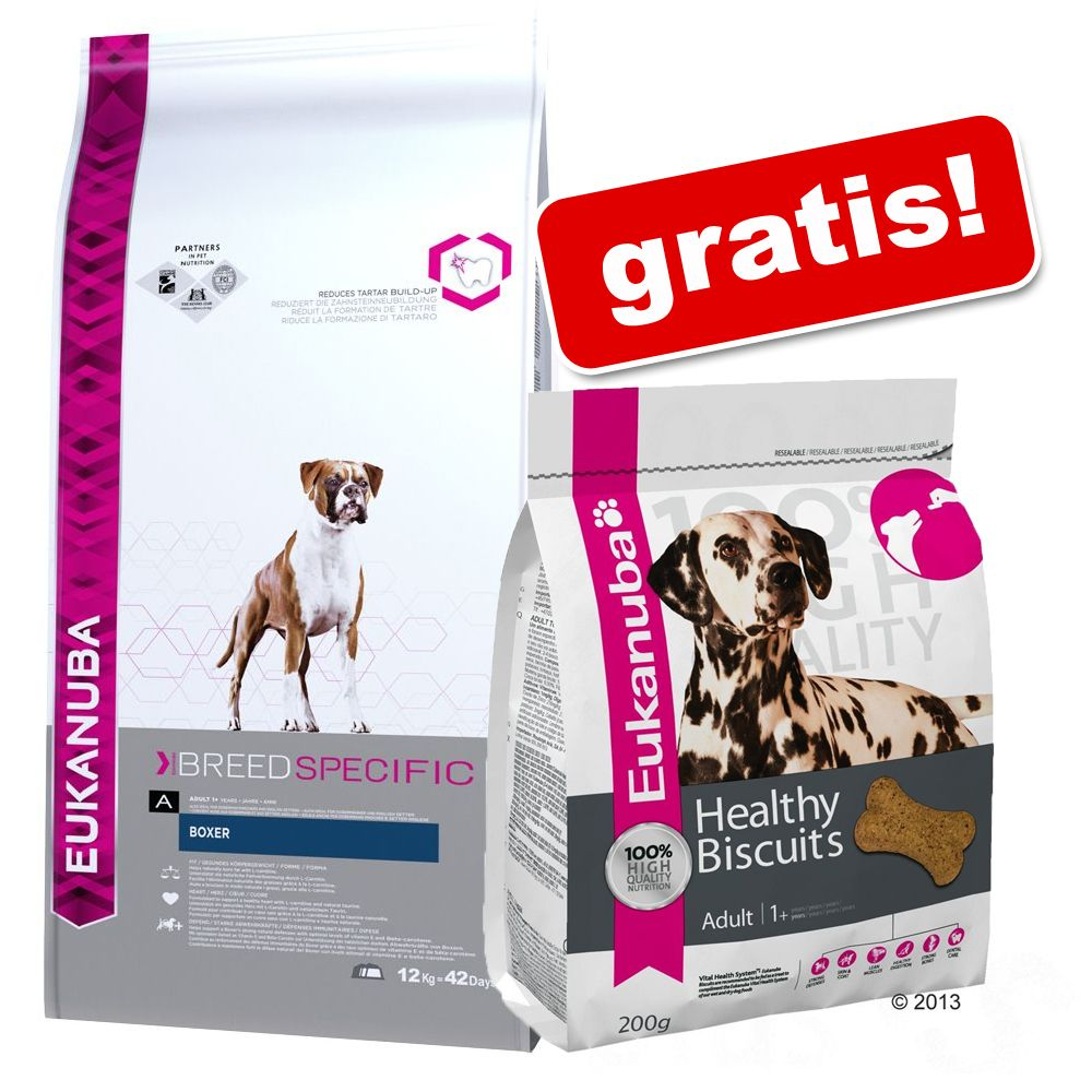 Foto Eukanuba + 2 x 200 g Healthy Biscuits gratis! - Golden Retriever 12 kg