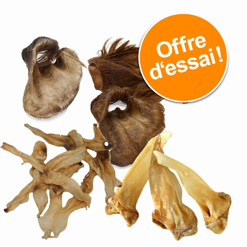 Chien Friandises ★ Wolf of Wilderness Offres d´essai friandises